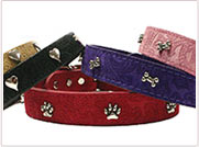Pet Leathers